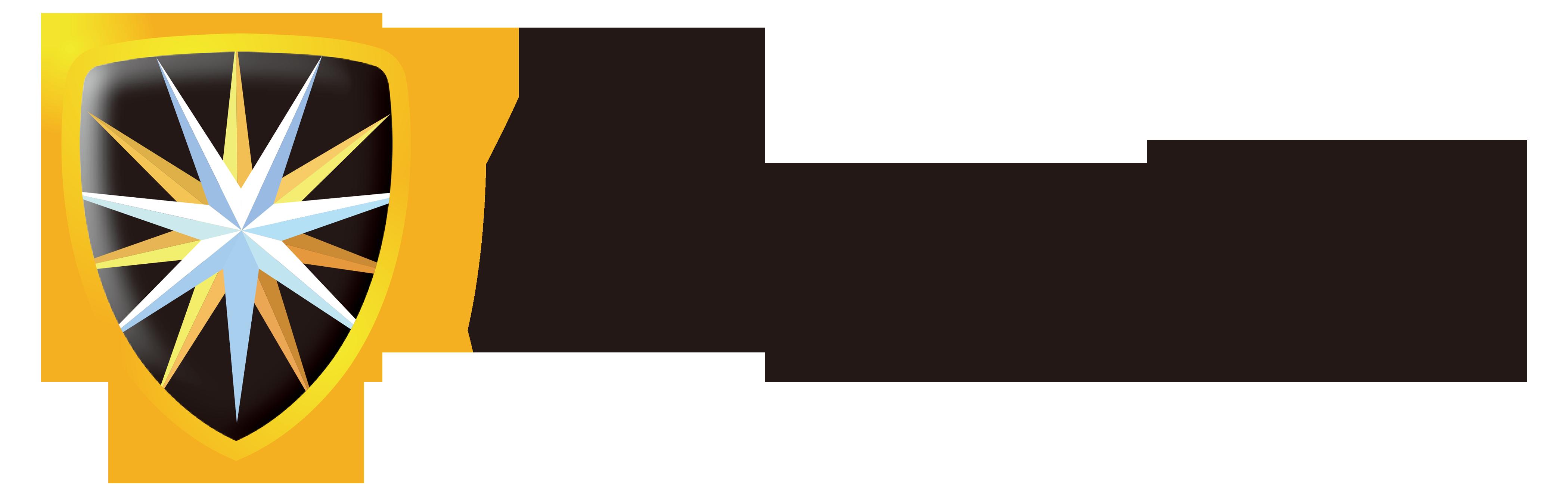 RayAegis